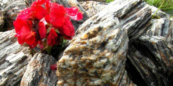 PIEDRA CORTEZA kora kamienna kamienie
